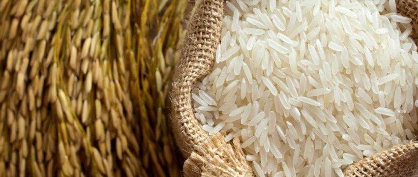 Irã levanta proibição de importação de arroz