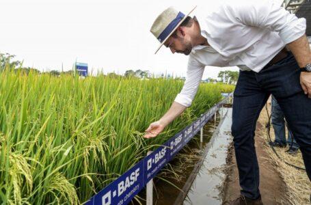 Leite: dinheiro do arroz, finalmente, vai para o Irga. (Foto: Governo do RS)