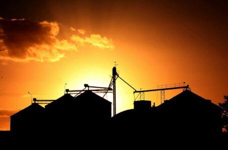 Operações de colheita estão praticamente encerradas (Robispierre Giuliani – Planeta Arroz)