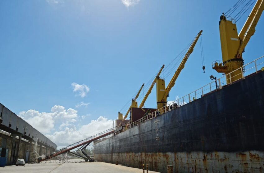 Pontos de discórdia impedindo o comércio de arroz do Vietnã