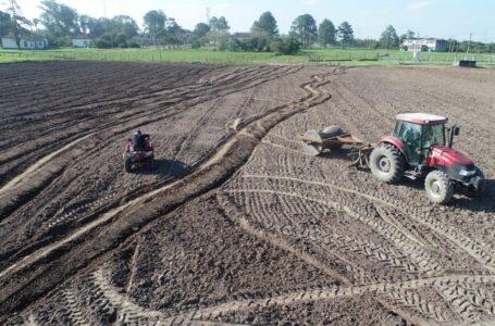 Plantio do arroz avança no RS e soja terá maior área da história em terras baixas. (Foto: Divulgação)