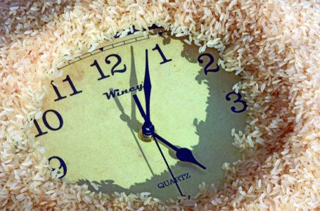 O arroz corre atrás do tempo perdido
