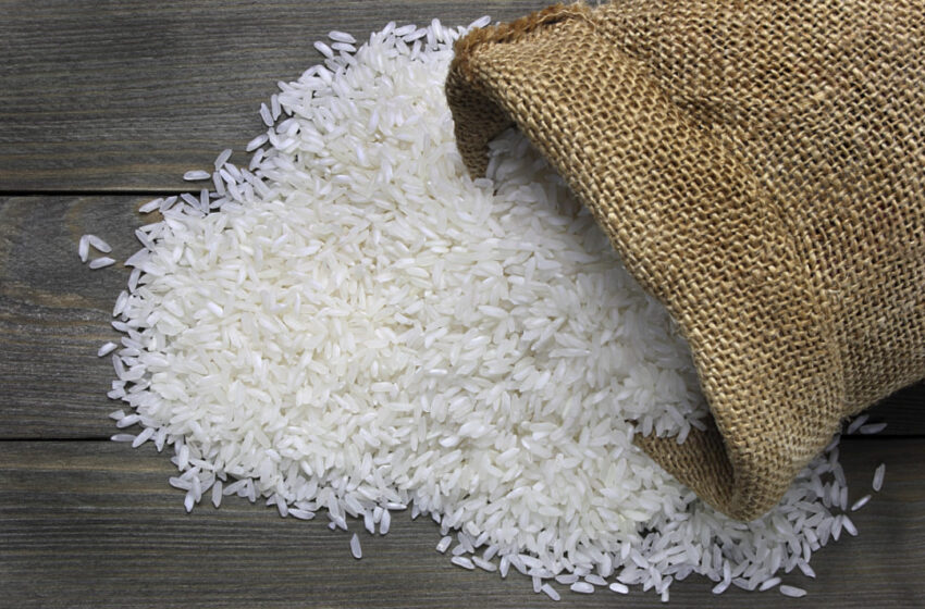 Indústrias aumentam em 20% o uso de arroz nas rações