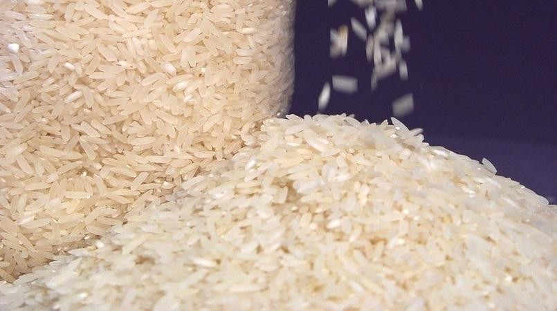 Leilão de troca de arroz para ajuda humanitária é remarcado para 29/04