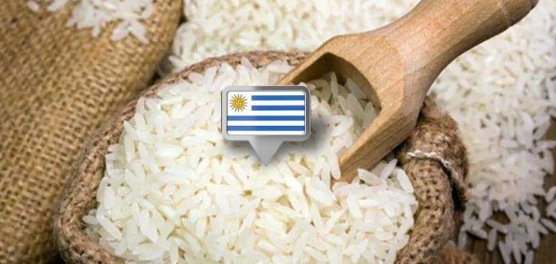 Vendas uruguaias somam 160 mil toneladas, 34,5% a menos que em 2020