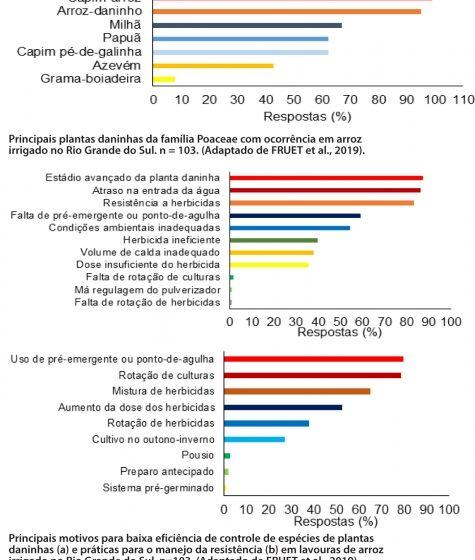 Situação atual de gramíneas em  arroz irrigado e métodos de manejo