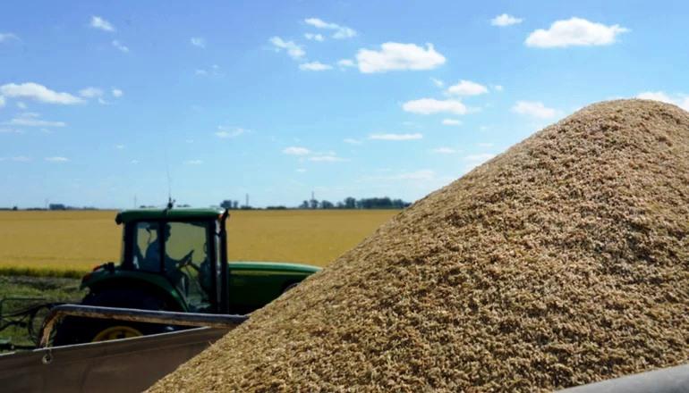 Argentina registra colheita tardia e bons preços