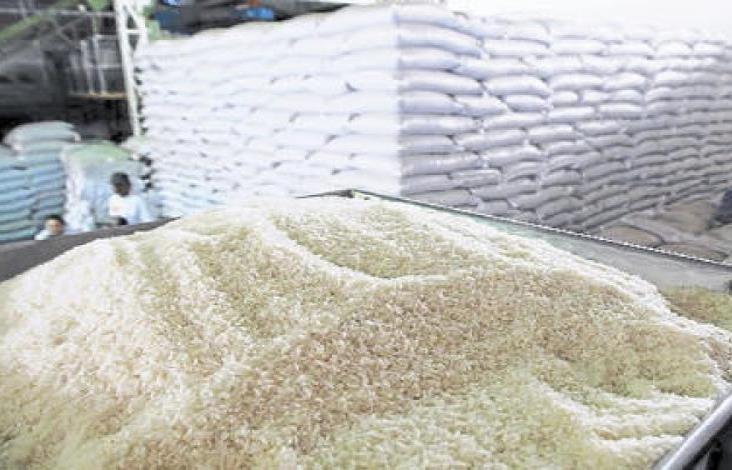 O arroz asiático invade o México e Veracruz;