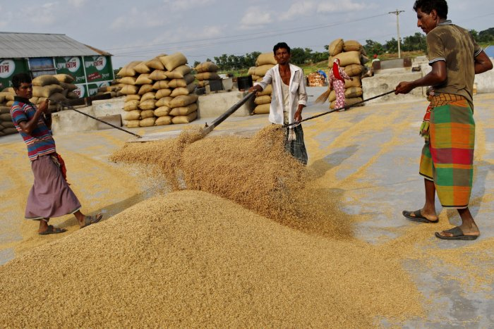 Índia perde pedidos com preços do arroz próximos do limite de alta em dois meses