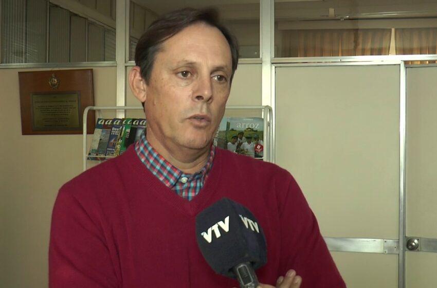 """Alfredo Lago: """"Un acuerdo con la UE le daría mejores oportunidades al arroz"""""""