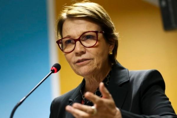 Preço do arroz cairá a partir de janeiro, prevê ministra da Agricultura