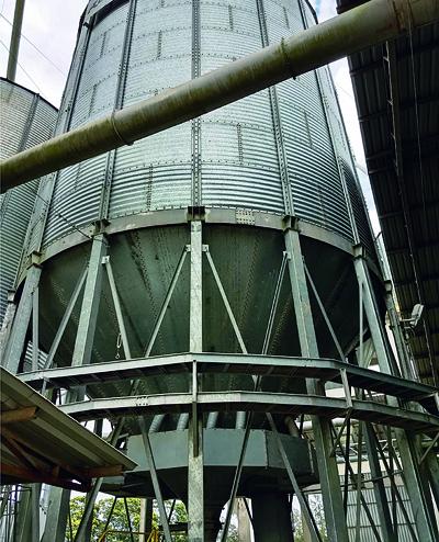 Manejo pós-colheita para alta qualidade industrial do arroz