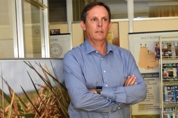 A pandemia consolidou o arroz uruguaio em nível mundial