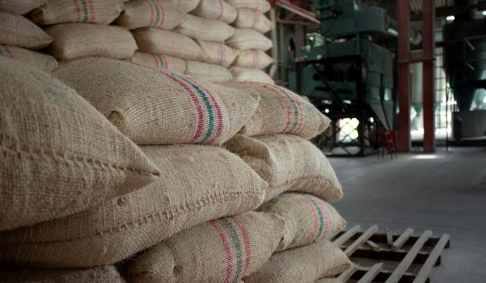 Colombia oficializó plan 2019-2038 para equilibrar producción de arroz
