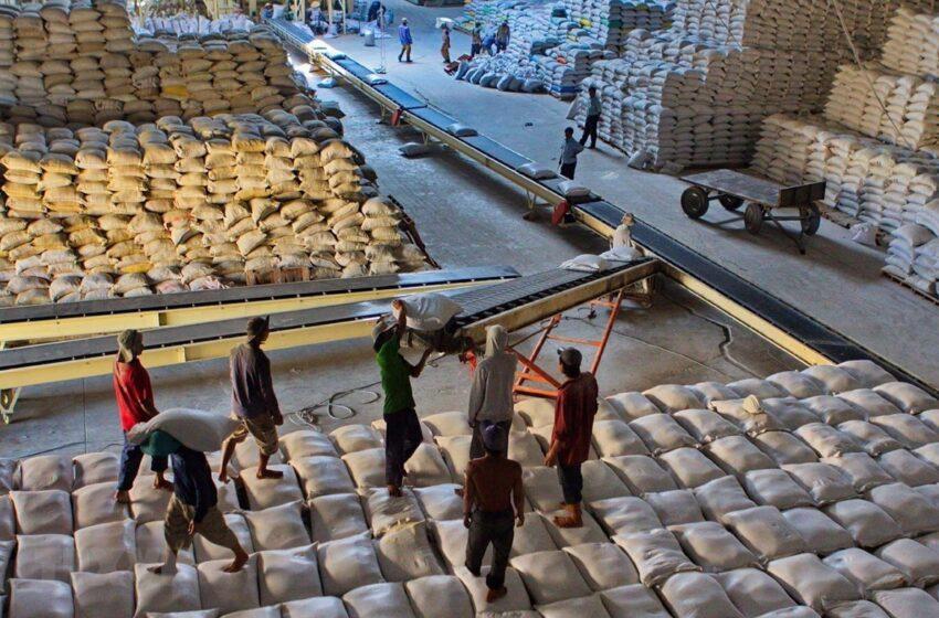 Volume de exportação de arroz tailandês abaixo da meta devido ao forte baht e à seca