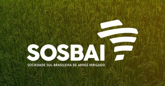 XII Congresso Brasileiro de Arroz Irrigado – Santa Maria – RS