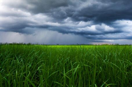 Chuvas voltarão ao estado (Foto: Divulgação)