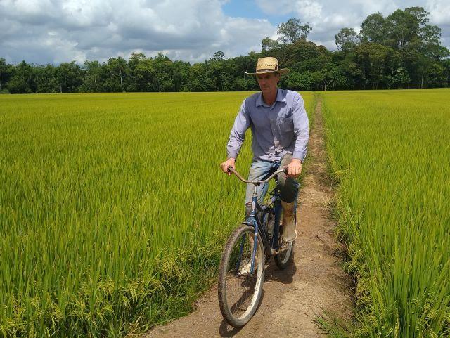 Taipas reforçadas fazem o caminho para a rizicultura sustentável em SC